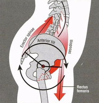 hip-structure