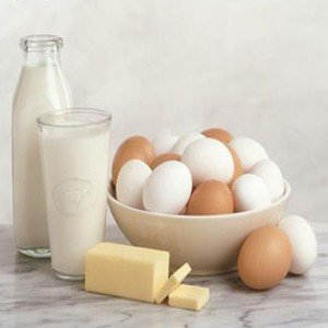 Protein-Based-Foods-which-contain-essential-amino-acids