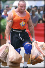 Bringing-In-The-Groceries.png